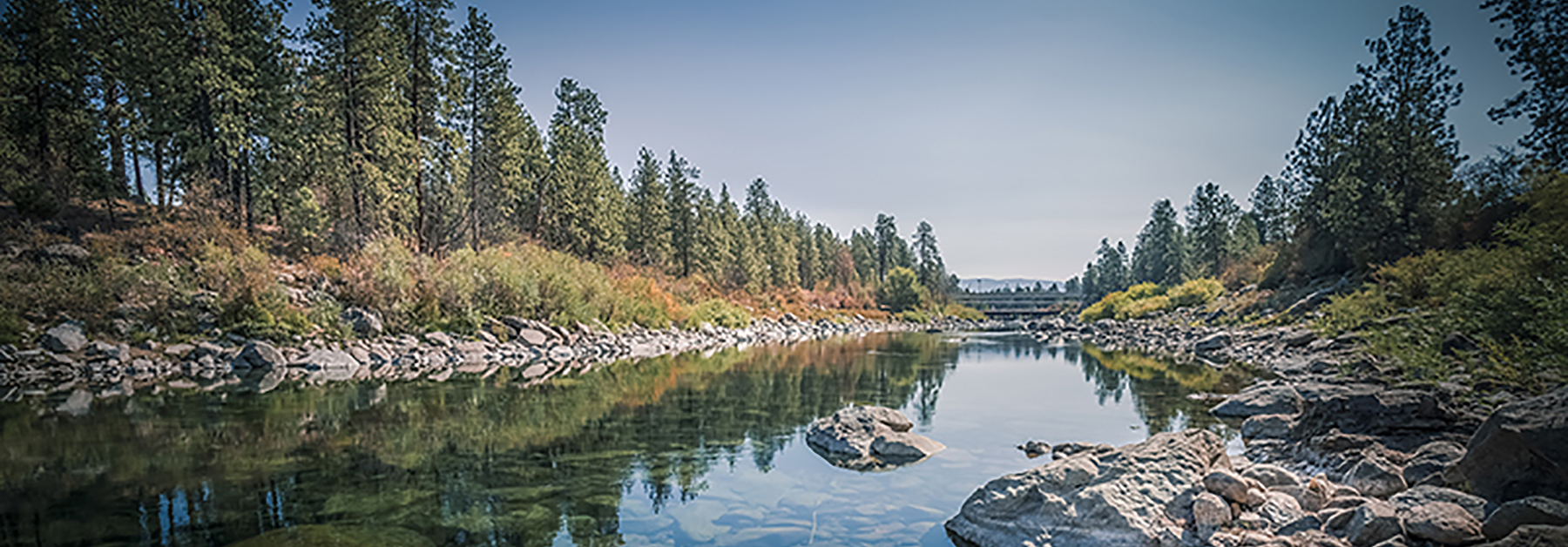Image of the Spokane river in spring, with trees in the background